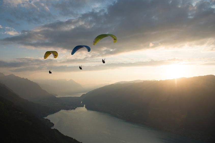 ALPHA 6 paraglider