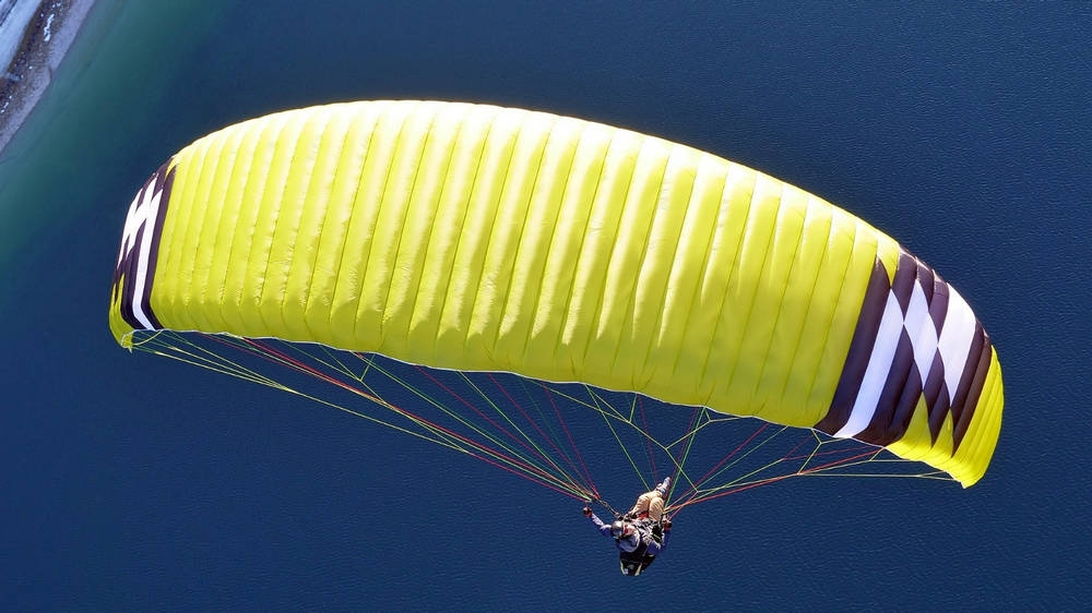 Phi BEAT mid B wing