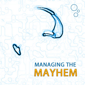 Safety: Managing the Mayhem
