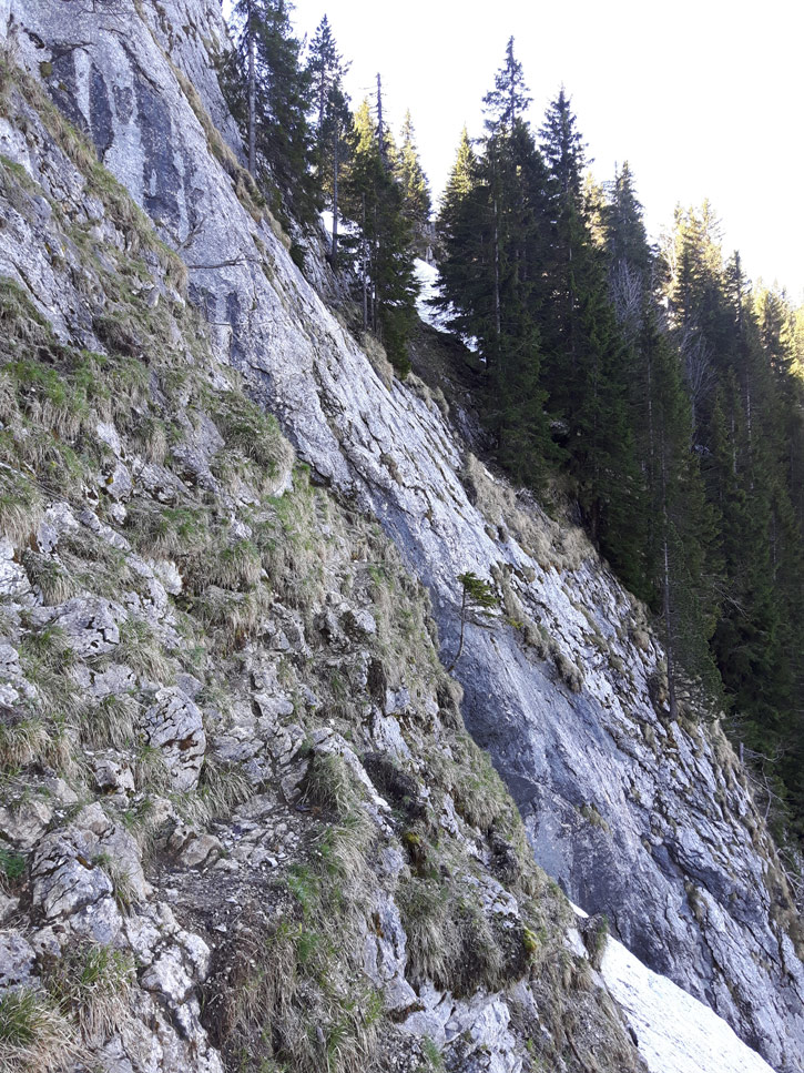 Bornes To Fly: day 3 cliff face